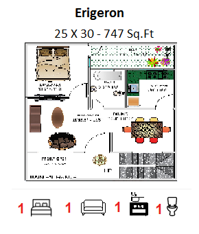 FLOOR PLAN FOR 25 X 30 FEET PLOT (747 SQUARE FEET)