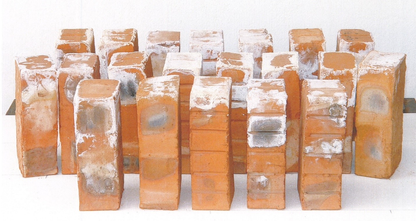 Tips to Get Rid of Efflorescence of Brickwork or Concrete!