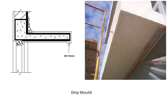 Image Result For Mold On Roof