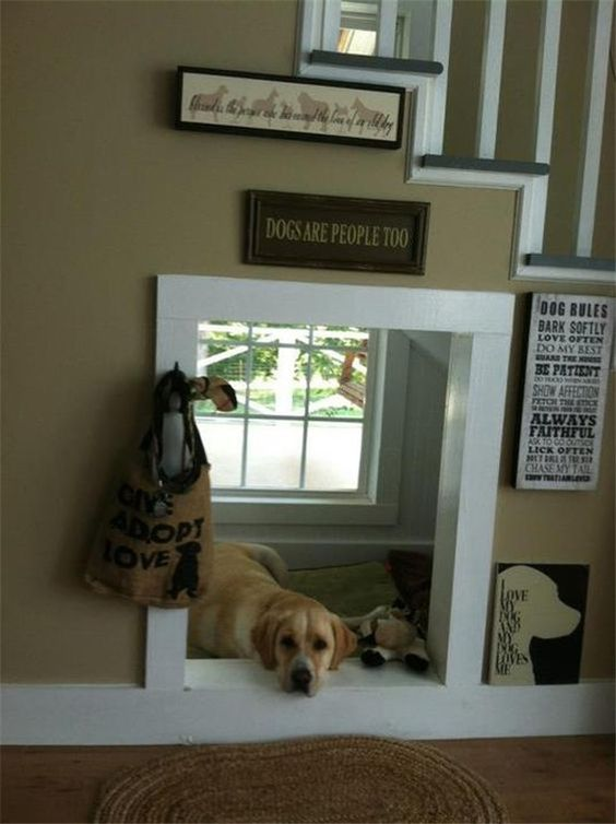 Space for Kennel underneath staircase