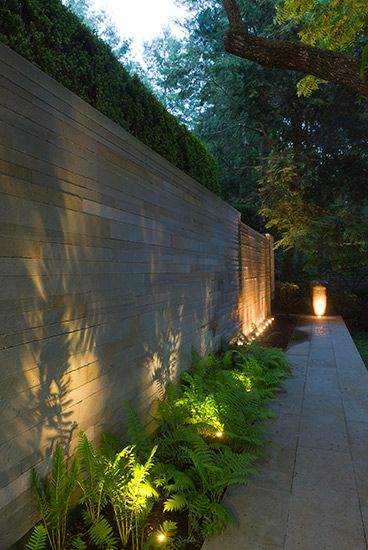 Well Lights to highlight plants and any architectural features