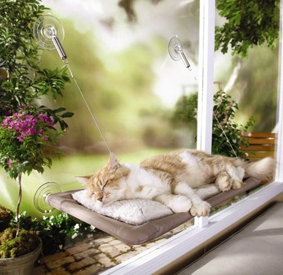 Wider Window Sill for your pet to rest